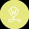 Wortelkanaal.png